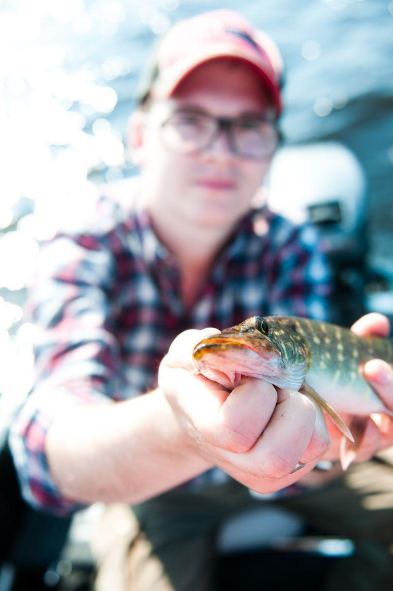 Små fiskar måste hållas nära kameran